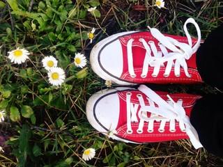 scarpe rosse sul prato