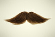 Brown mustache on a sepia background