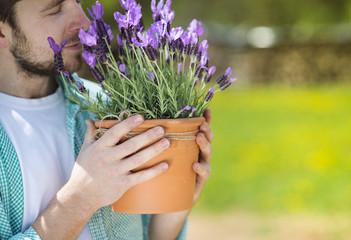 Gardener with lavender