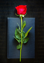 Black book with red rose
