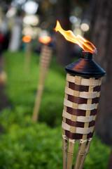 Torce ecologiche per giardini