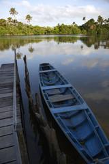 Calm Brazilian River Boat Dock Rural Brazil