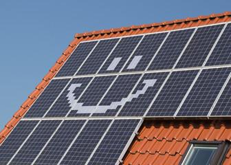 Solardach - gute Idee