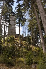 Lookout tower hidden in forrest