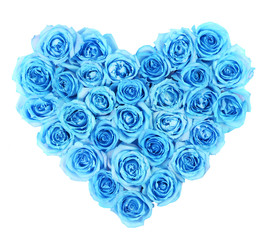 Turquoise roses in heart shape isolated on white