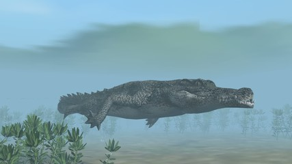Crocodile swims under water - close up