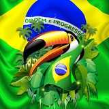 Toco Toucan with Brazil Flag - 64347884