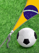 Zipper with Grass and football ball on Brazil flag.