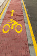 Marked bicycle path as part of city pedestrian zone