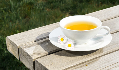 Tea camomile flower