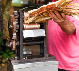 manual mechanism for squeezing juice from sugar cane