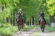 Zdjęcia na płótnie, fototapety, obrazy : Girls on horseback riding