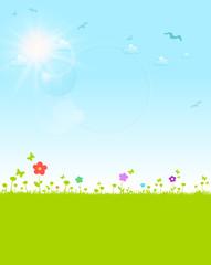 Blumenwiese Sommer, Sonne und blauer Himmel