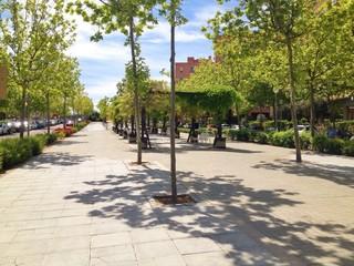 a sidewalk with trees