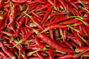 唐辛子 Red pepper
