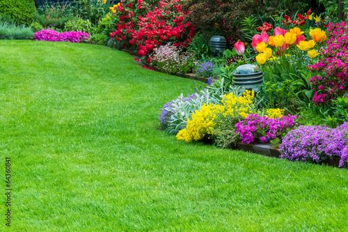 Fotobehang Tuin Rasen, Tulpen, Garten