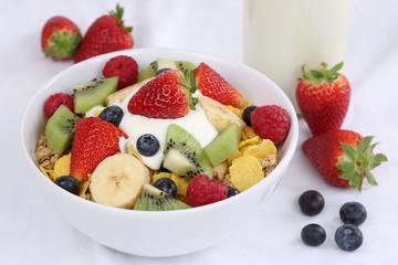 Früchte Müsli mit Joghurt zum Frühstück