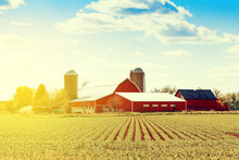 "Постер, картина, фотообои ""Traditional American Farm"""