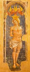 Bologna - Fresco of st. Sebastian  in church San Giovanni