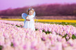 Beautiful toddler girl in fairy costume in a flower meadow