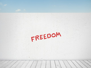 freedom behind the wall, concept