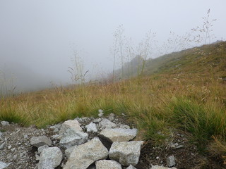 Mountain trail in Europe - the challenge of the morning.
