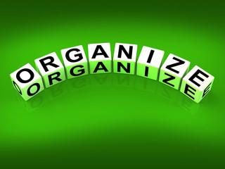 Organize Blocks Represent Organization Management and Establishe