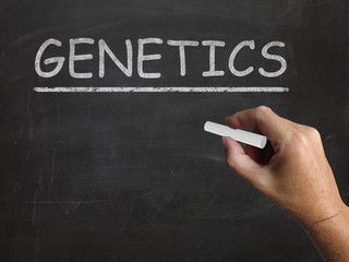 Genetics Blackboard Means Genes DNA And Heredity