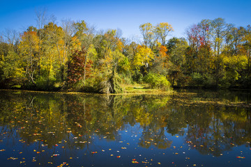 Fall Reflections on the Delaware and Raritan Canal