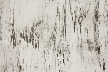 Whitewashed Plywood Background