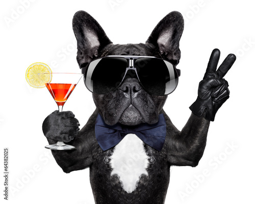 canvas print picture cocktail dog