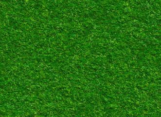 lush green grass texture on a rock backgrounds