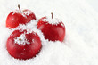 Red apples in snow close up
