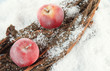 Red apples on bark in snow close up