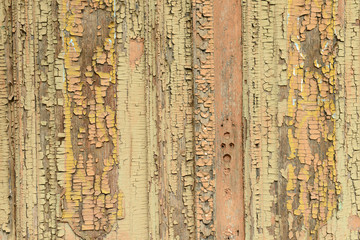 Wooden texture close-up