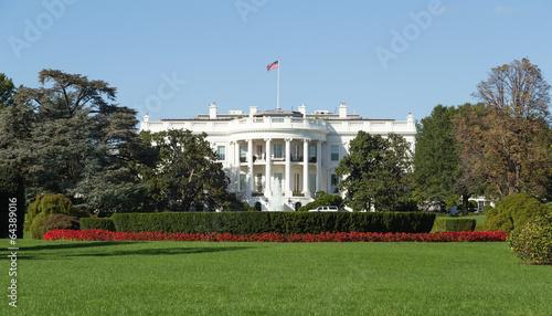 Washington, DC - White House back yard on a Summer day - 64389016