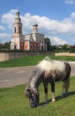 Horse. Assumption Church in Serpukhov, Moscow region