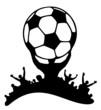 Fans Jubel Fussball