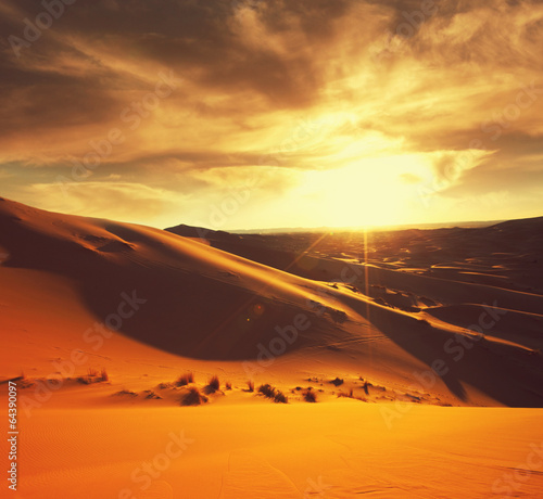canvas print picture Desert