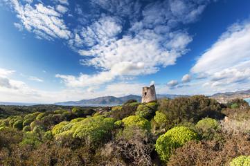 Mediterranean view with coastal tower