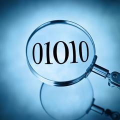 inspect data