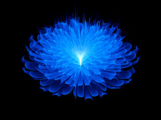 Blue space flower background