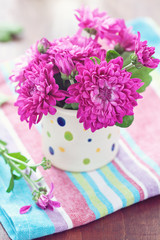 fresh purple chrysanthemum flowers in a flowerpot on the table