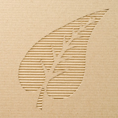Leaf cut out on a corrugated cardboard