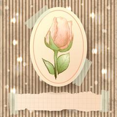Vintage illustration with rose