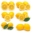 Collection of lemon