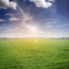Landschaft / Himmel / Gras