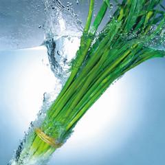 물과 채소