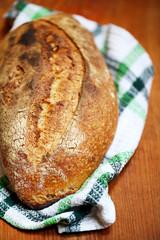 Sourdough loaf bread with a slash and crusty crust on a teatowel