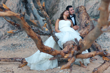 Bride and groom sitting on a big tree